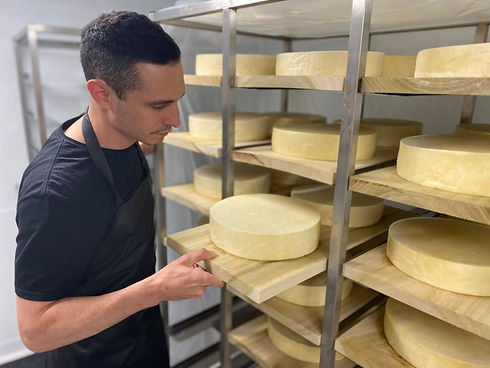 Cheese Aging cave