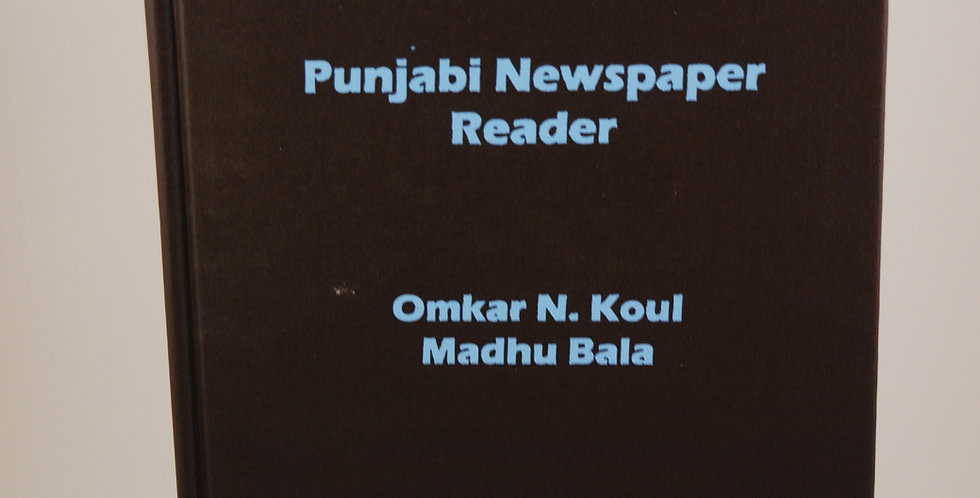 Punjabi Newspaper Reader
