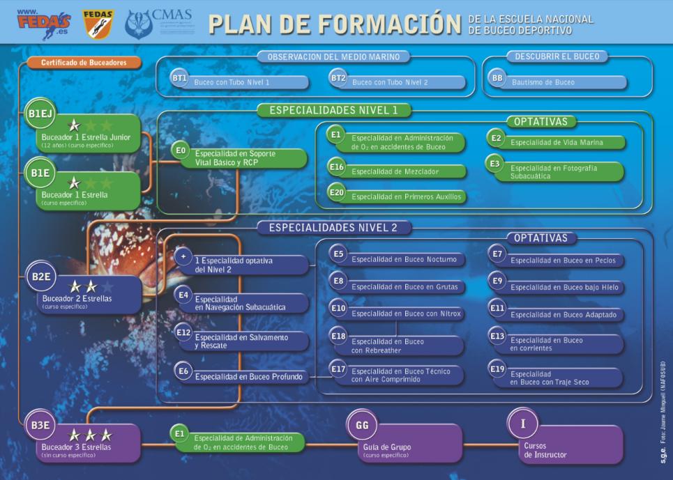 Plan de Formación FEDAS