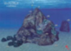 Ullastres 3 Anemone
