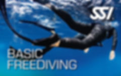 Anemone Basic Freediving SSI