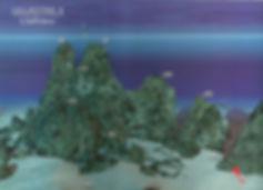 Ullastres 2 Anemone