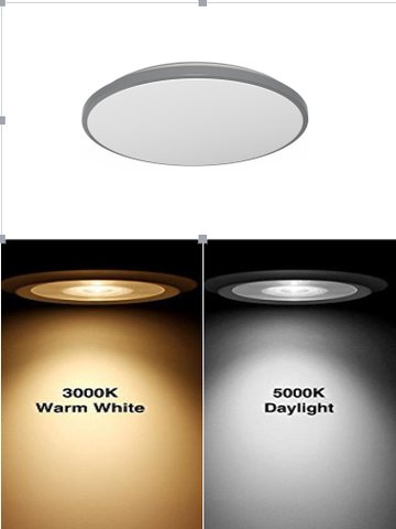 "11"" Single Ring Ceiling Light"