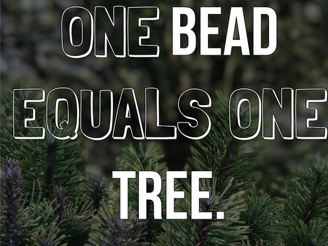 One Bead Equals One Tree...