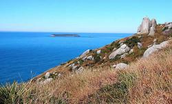 Costão rochoso e ilha