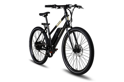 RadMission Electric Bike