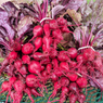 Beets - Red