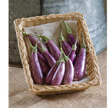 Eggplant - Farytale
