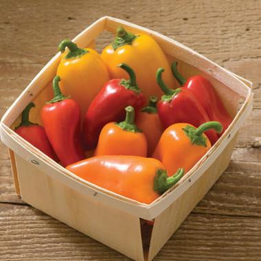 Lunchbox Pepper Mix