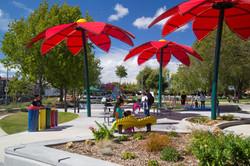 Greenwood Park, Hayward, CA flowers