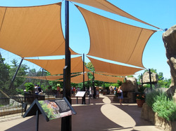 St. Louis Zoo-BCC Shade Sails