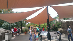 St. Louis Zoo- BCC Shade Sails