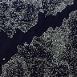 Mapa Vigo, 2018