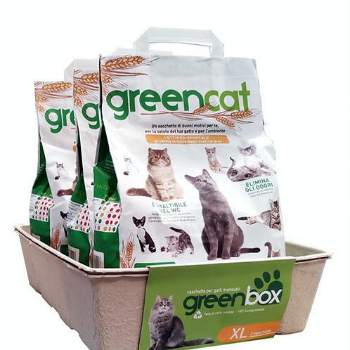 Greencat Cat Litter & Boxes