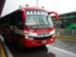 buses alianza.jpg