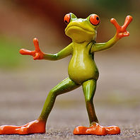 frog-1234516_1920.jpg