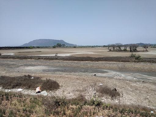 AishwaryaSridhar_Panje_Landscape_1129.jpg