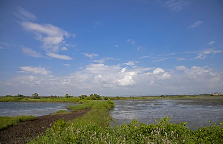 AishwaryaSridhar_Panje_Landscape_0422.jpg