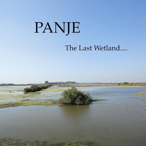 The Panje Wetland