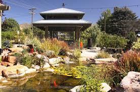 Cactus and Tropicals inside garden wedding Salt Lake City Utah