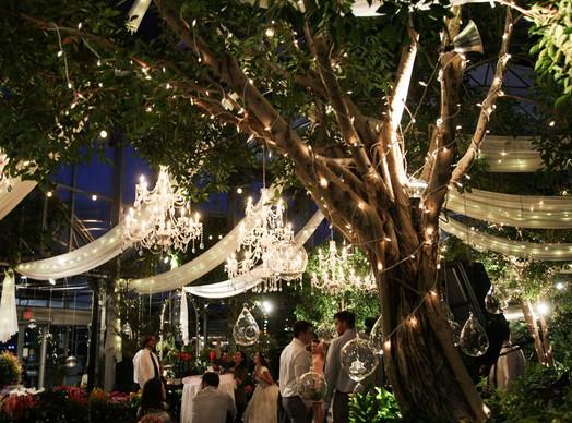 cactus-tropicals-draper-wedding-street-u