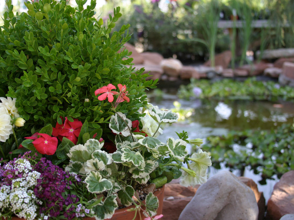 cactus-and-tropicals-utah-wedding-venue-salt-lake-city