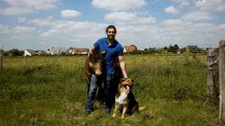 ostéopathe animalier chien
