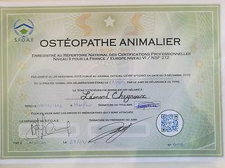 osteopathe animalier deauville