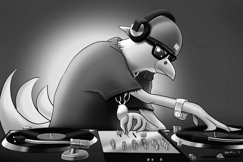 DJ Chicks - BNW.jpg