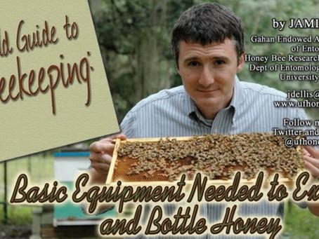 Honey extraction - what you'll need and how to do it