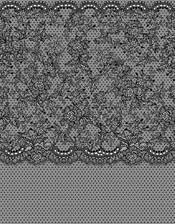 S3.jpg