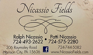 nicassio fields.png