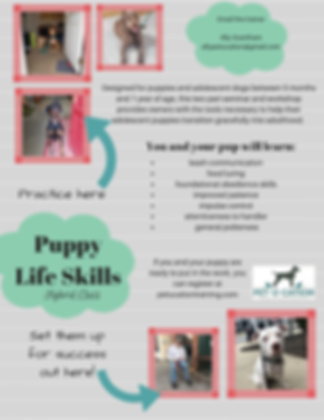 Puppy_Life_Skills_Flyer_4-8.png