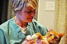 Dr. Suzanne Sheldon cat