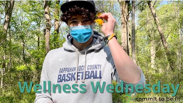 Wellness Wednesday video.png