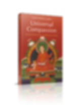 book-Universal Compassion_3D_02-2012.png