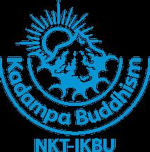 nkt logo.webp