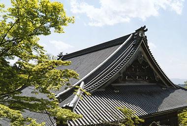 roof_14-520x350.jpg