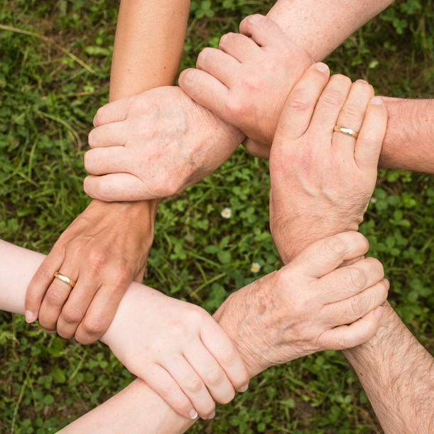 Harnessing the Power of your Team