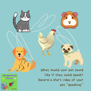 If My Pet Could Talk