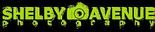 SA logo green.png