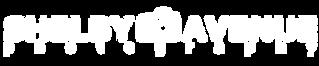 SA logo white.png