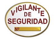 vigilante-seguridad-oposicion-pruebas-en