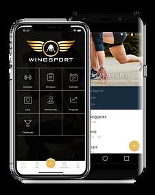 app, wingsport, entrenamiento, rutinas d