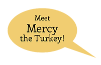 Mercy the Turkey