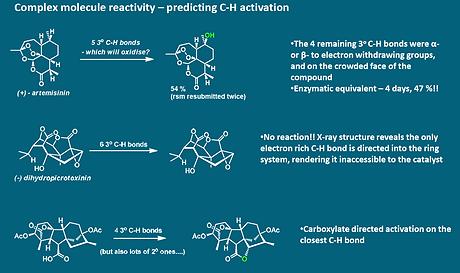 C-H oxidation.PNG