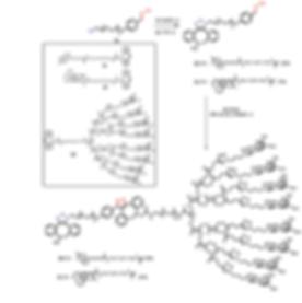 Alkyne labels.PNG