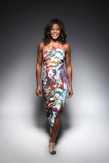 Nicole Henry_paint theme dress.jpg