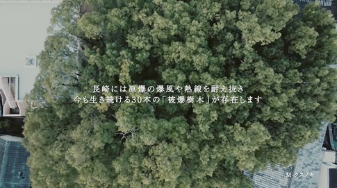 「長崎クスノキプロジェクト」ムービー