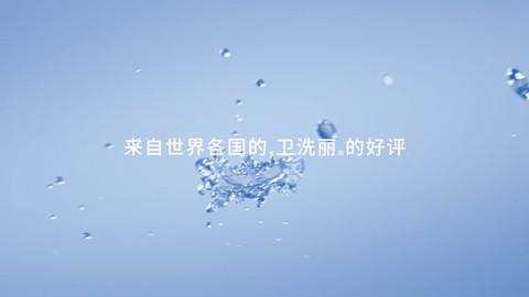 toto_2-e1596435114181.jpg